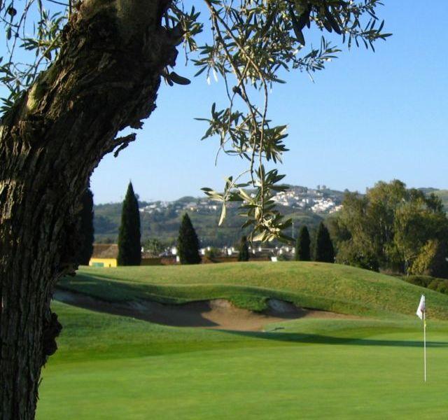 Mijas Golf Los Olivos Green 10
