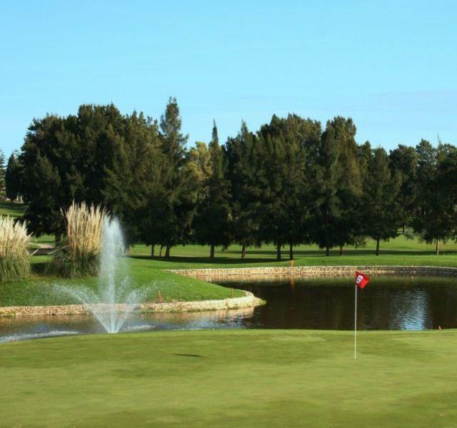 Mijas Golf Los Olivos Green 6