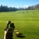 Mijas Golf Driving Range Grass